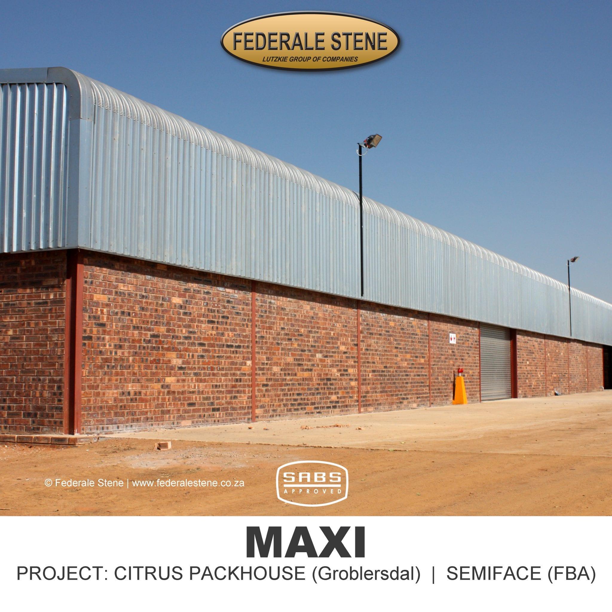 FS WebProject Maxi 5
